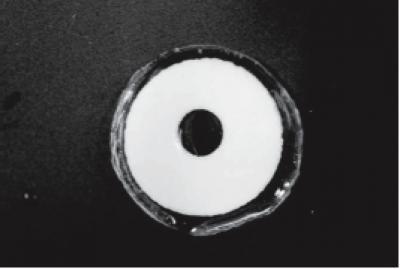Prototipo di lenti a contatto terapeutiche (Copyright 2009 Association for Research in Vision and Ophthalmology-ARVO).
