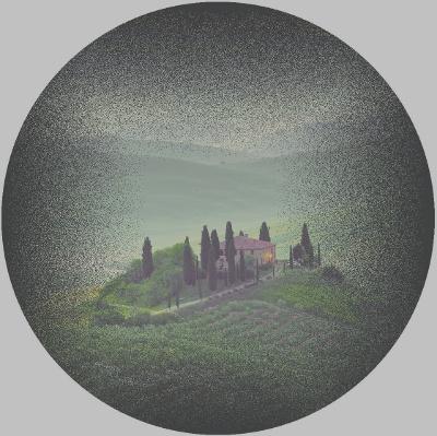 Visione di malato colpito da retinite pigmentosa (copyright immagine: IAPB Italia onlus)