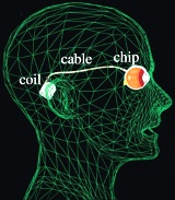 occhio-bionico-schema-alpha_ams-web.jpg